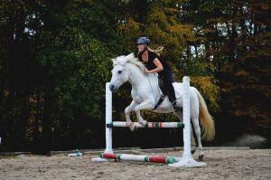 An example of my natural horsemanship work. Photo taken by Julia Deraska.