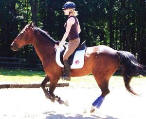 One of my many rides since the accident. Often, bridleless trainers don't wear helmets, but I'm not one of those trainers.